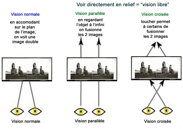 Visions Parallele Croisee